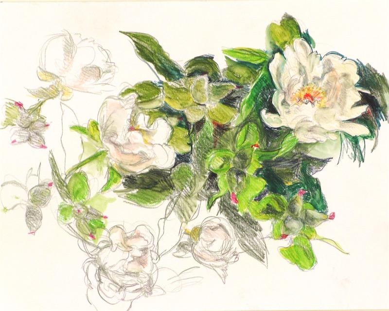 white-rose-peony-web