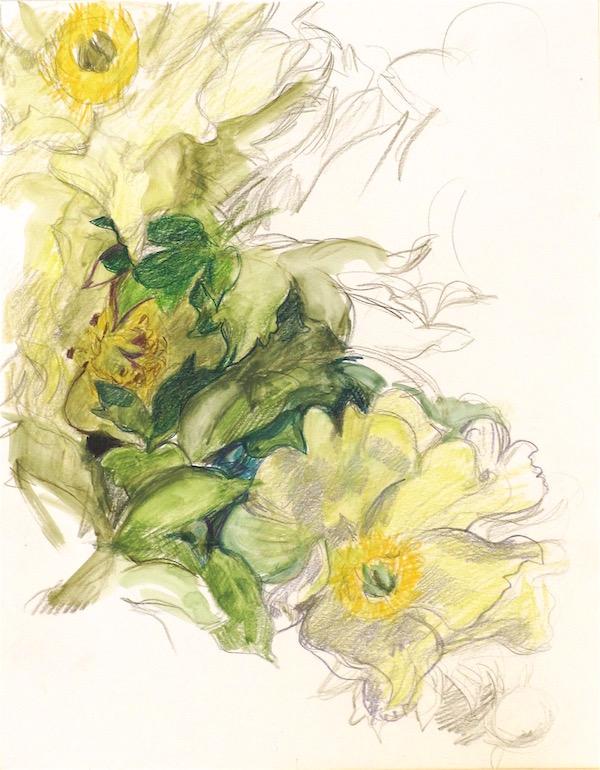 yellow-peonies-web